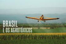 O Brasil e os agrotóxicos